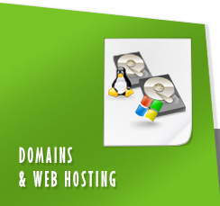 Domain & Web Hosting